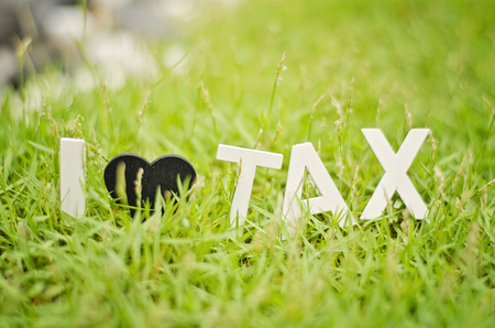 balanced budget: blurred image closeup view white wood alphabet i love tax. black love symbol on green grass