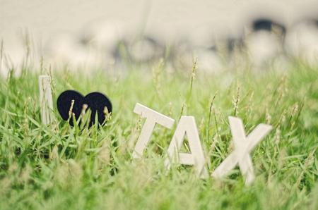 balanced budget: retro and aged look  image concept closeup white wood alphabet i love tax. black love symbol on green grass