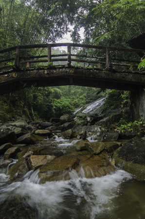 waterfall in forest: Beautiful water flow with concrete bridge with wood look. waterfall and green forest