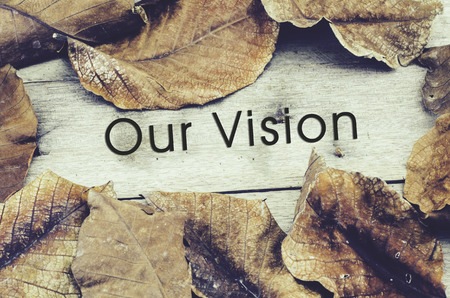 our vision: word OUR VISION surrounded by dry leaves .old wooden background and retro look theme