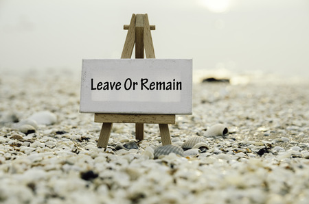 yes or no to euro: white vanvas on wooden easel with word leave or remain over sunset background. selective and blurred clamshell and sea shell