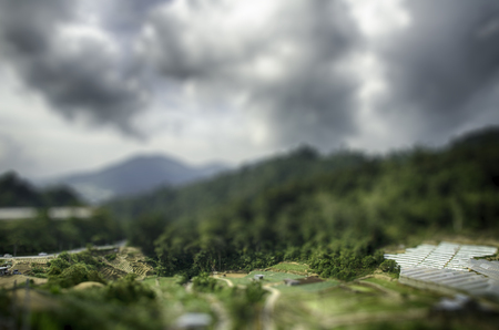 tilt: tilt shift landscape effect. cameron highland, Malaysia surrounded by hill and cloudy sky Stock Photo