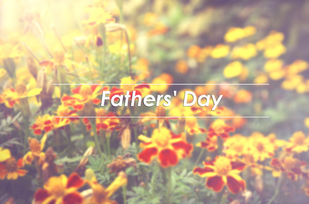 patula: blurred image background of French marigolds (Tagetes patula) flower with word FATHERS DAY