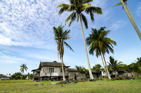 terengganu: beautiful village scenery located in Terengganu, Malaysia. Surrounded by coconut tree, cloudy sky and green grass