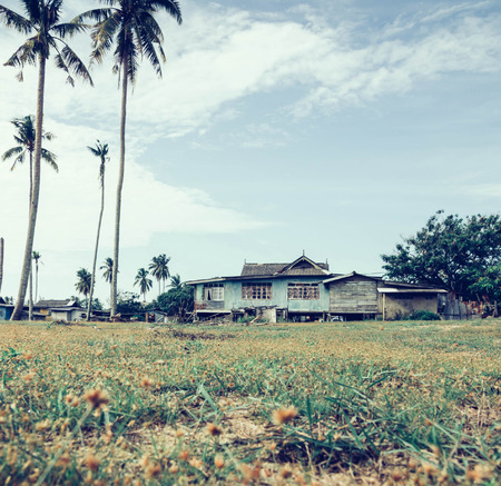 traditional house: vantage look color, beautiful scenery traditional village located in Terengganu, Malaysia. wooden house surrounded by coconut tree, green grass with yellow flower and cloudy blue sky at suny day.selective focus and blurred image.