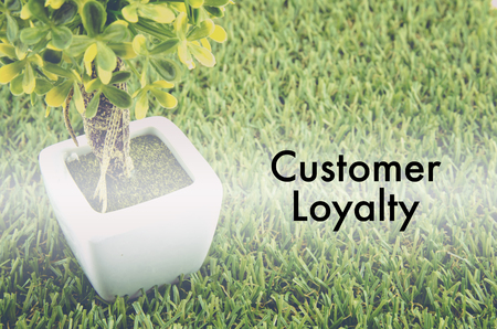 tree service: Conceptual image,customer service and support with word CUSTOMER LOYALTY over green artificial grass and small tree on white pot.