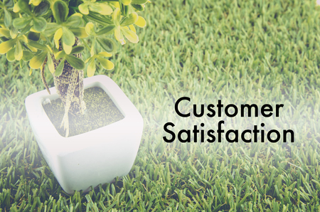 tree service: Conceptual image,customer service and support with word CUSTOMER SATISFACTION over green artificial grass and small tree on white pot. Stock Photo