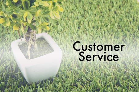 tree service: Conceptual image,customer service and support with word CUSTOMER SERVICE over green artificial grass and small tree on white pot.