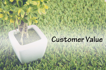 tree service: Conceptual image,customer service and support with word CUSTOMER VALUE over green artificial grass and small tree on white pot.