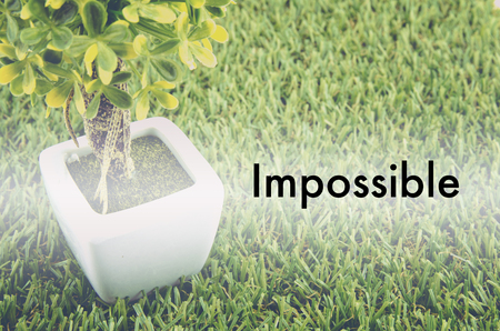 small tree: Conceptual image,customer service and support with word IMPOSSIBLE over green artificial grass and small tree on white pot.