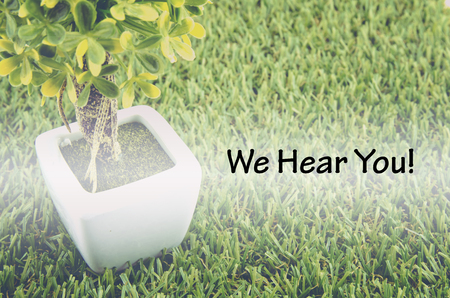 tree service: Conceptual image,customer service and support with word WE HEAR YOU over green artificial grass and small tree on white pot. Stock Photo