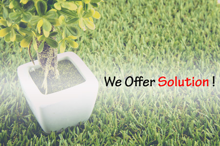 tree service: Conceptual image,customer service and support with word WE OFFER SOLUTION over green artificial grass and small tree on white pot. Stock Photo