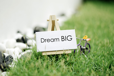 conceptual image, word DREAM BIG on white canvas frame and wooden easel. Blurred and soft focus background, green grass with wired handcrafted colorful bicycle and stone.