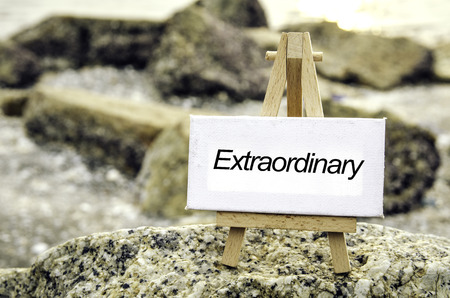 conceptual image with word EXTRAORDINARY on white canvas and wooden easel.Blurred rock and beach background at sunset.