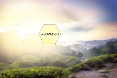 tea plantation: conceptual image with word INNOVATION over blurred nature image background of tea plantation Stock Photo