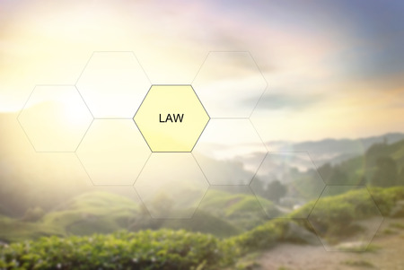 conceptual image with word LAW over blurred nature image background of tea plantation