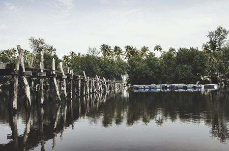 floating bridge: classic look and retro image. beautiful reflection on water wooden bridge, coconut tree, mangrove tree and buoy floating Stock Photo