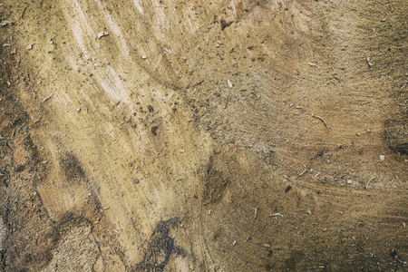 wood texture for grunge and raw background