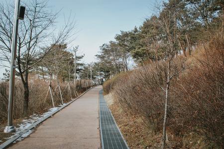 walk path: walk path and beautiful Korea nature at hill top during winter season