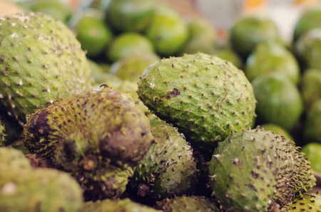 sell: Exotic tropical fruit, soursop display for sell in market.selective focus shot. image may contain noise and grain due to available light shot
