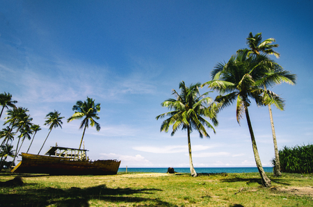 Beautiful nature, stranded boat on the beach at sunny day surrounded by coconut tree and blue sky