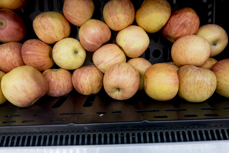 Fresh red apples in basket Stock Photo
