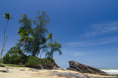 wild tropical island and rocky sea shore under bright sunny day and blue sky background. Foto de archivo