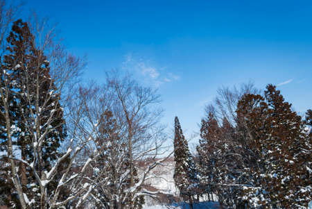 white snow and river landscape during winter season in Japan against blue sky background