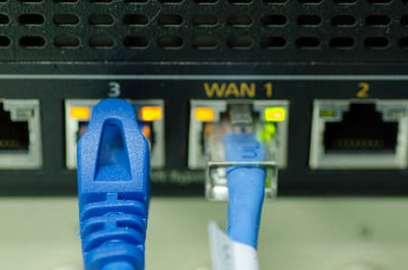 network cable and switch port in the data center. selective focus shot. noise and grain effect due to low light