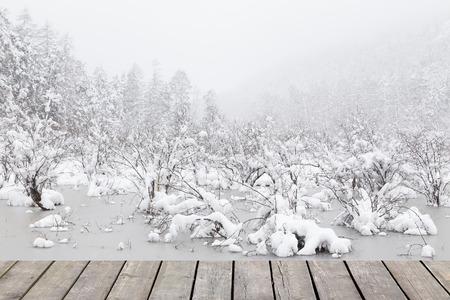 frozen lake: frozen lake with snow Stock Photo