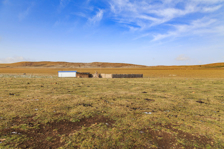 prairie: prairie Stock Photo