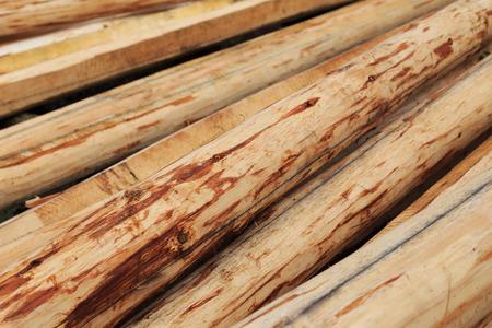 wood Reklamní fotografie