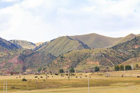tibetan house beside the mountain Reklamní fotografie