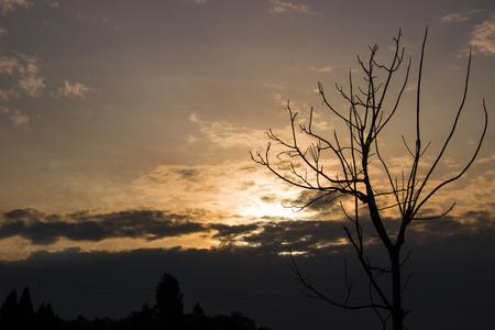 deadwood: Sunset Stock Photo