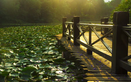 astigmatism: The morning light