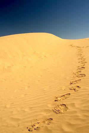 easygoing: Shot at Mildura Sand Hill, NSW Australia Stock Photo