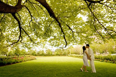 Couple kissing under the tree Stock Photo - 238824