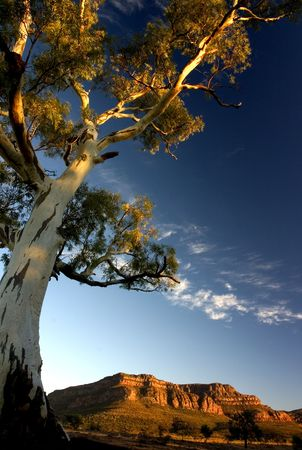 Shot at Flinders Ranges, Australia photo