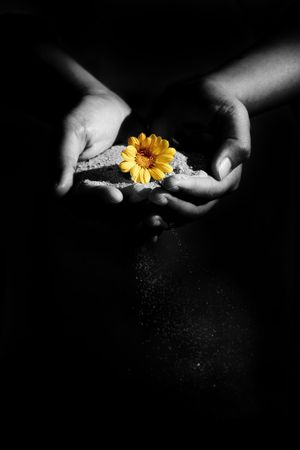 holistic: a woman holding sand and a flower. Shot was manipulated in PS