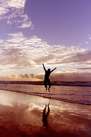 free the brain: Location: Noosa Beach, Queensland - Australia