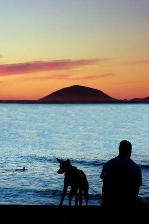 veiw: Man and his pet enjoying sunset at Sunshine Coast