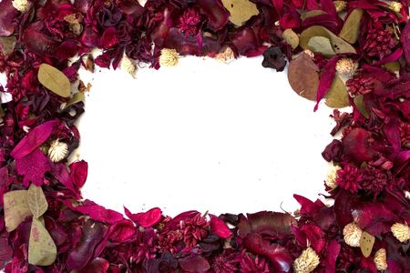 bri: Frame made of dried flowers Stock Photo