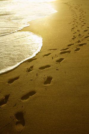 huellas pies: Huellas de ir sobre una playa de arena