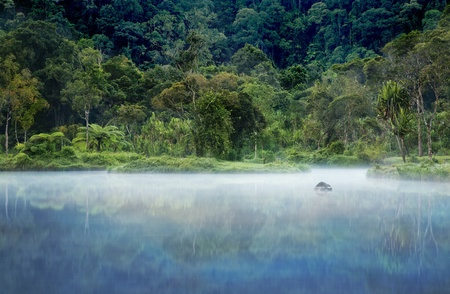 Misty morning shot of a small lake with a rain forest in the background photo