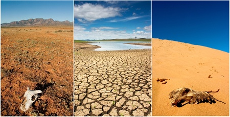 Various photos of drought in Australia photo