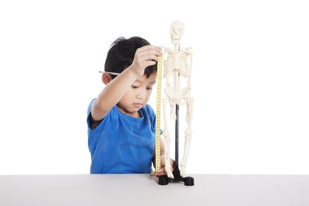 Cute Asian boy learns about human anatomy isolated on white photo