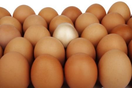 Golden egg, concept of Making Money