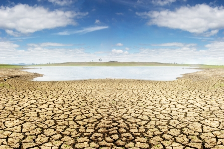 outback: Dried land near Brisbane landscape, Suitable for global warming themes.