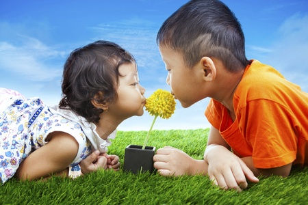 Adorable kids kissing yellow flower on the green grass photo