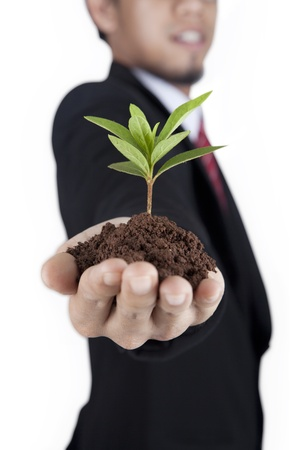 Businessman holding a fresh young sprout. Symbol of growing and green business photo